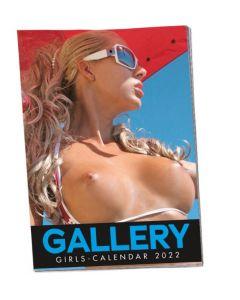 Sienas Kalendārs Soft Gallery Girls 2022