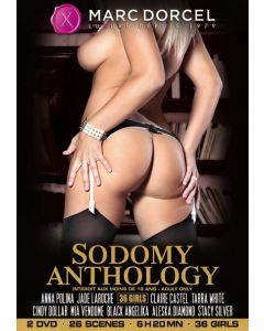 DVD Sodomy Anthology